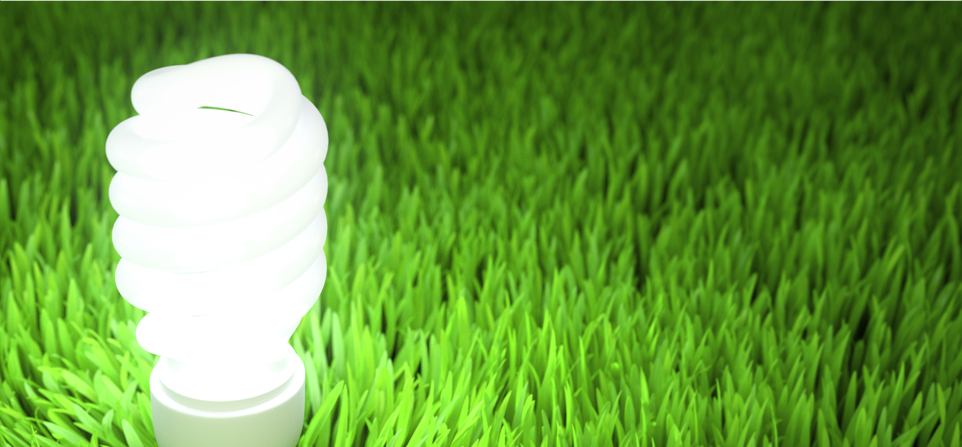 Energy Efficiency and Demand-Side Management Experience